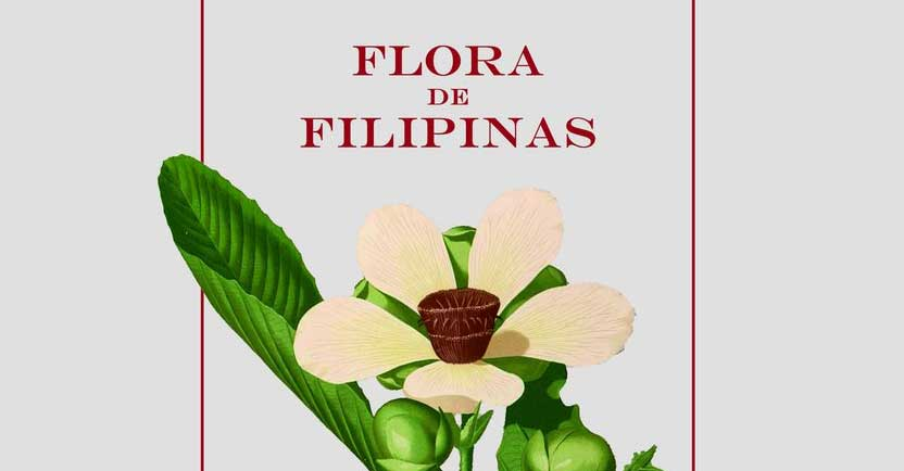 Flora De Filipinas: A Short Overview of Philippine Plant Lore |